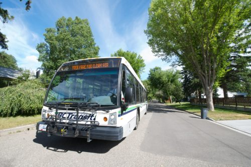 Transit makes changes for the summer