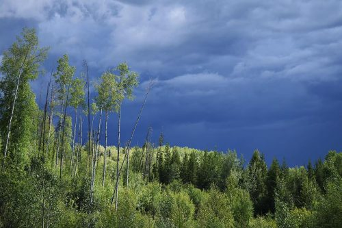 Severe thunderstorm watch in effect for Prince George