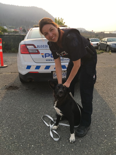 Cpl. Stephanie Lim with dog found in evacuation zone. RCMP photo