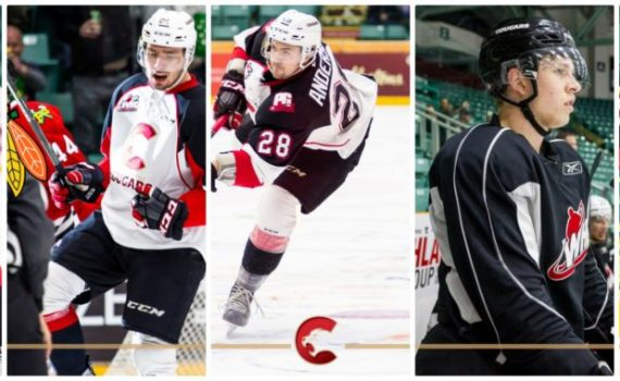 Five Prince George Cougars are off to NHL camps.