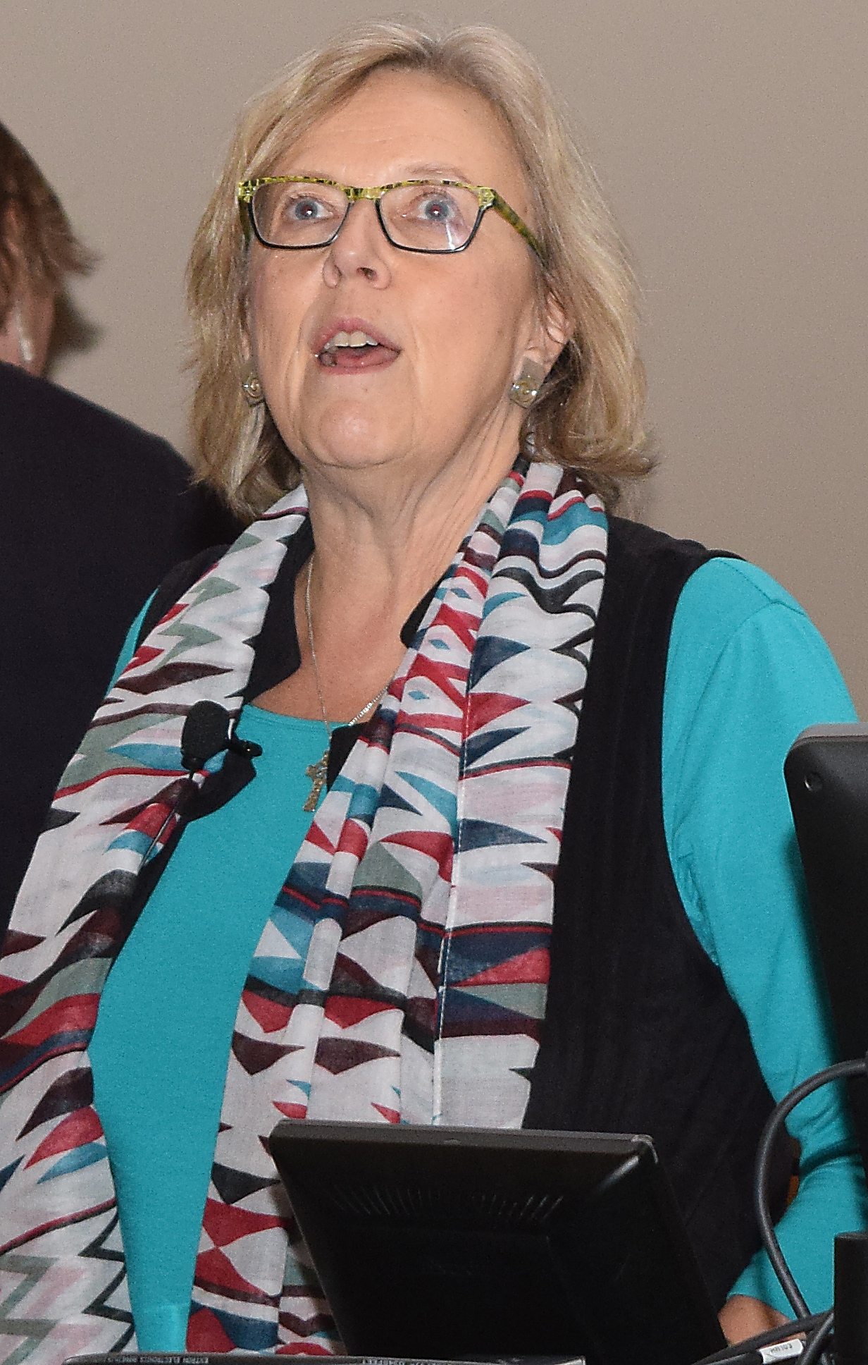 Green Party leader Elizabeth May. Bill Phillips photo