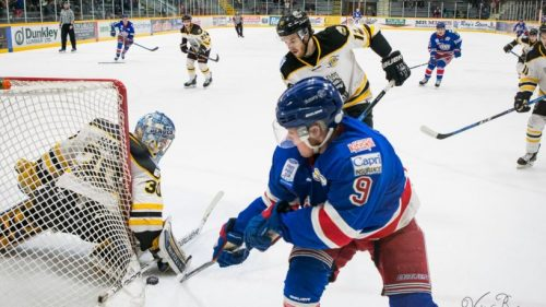 Spruce Kings fall to the Express