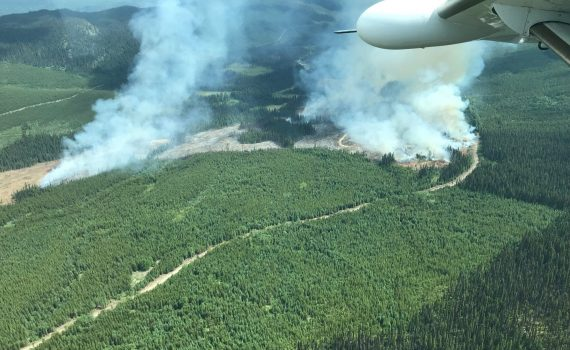 The Taltapin Lake fire is about four kilometres south of Taltapin Lake and covers about 30 hectares. BC Wildfire Service photo