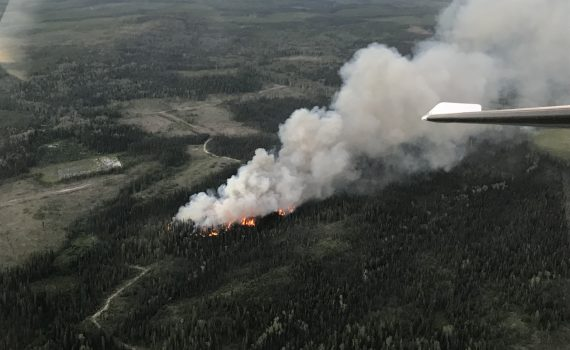 Dog Creek fire northwest of Vanderhoof. B.C. Wildfire Service photo