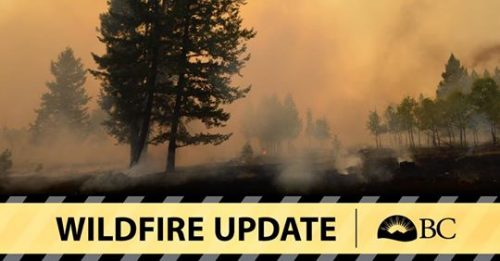 Wildfire Service dealing with four 2018 fires in Cassiar fire zone