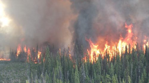 More than 500 evacuees now in Prince George