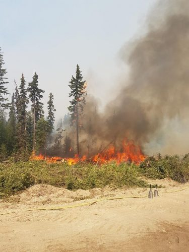 Planned burns set on Shovel Lake fire today