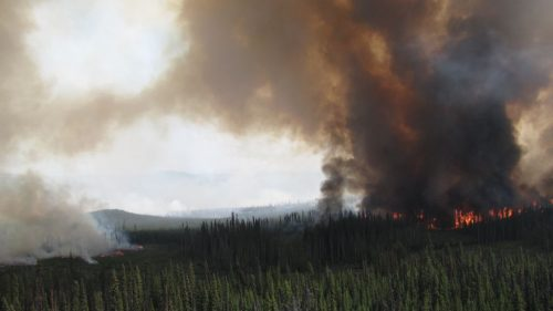Shovel Lake fire active, but no growth yesterday