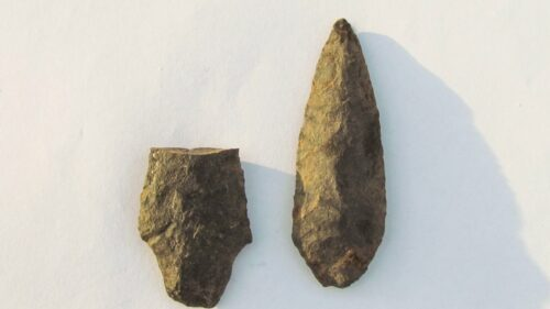 Possible artifacts discovery halts pipeline work
